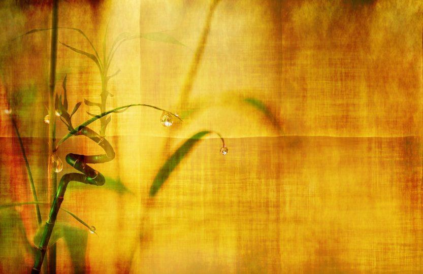 Bambusparkett